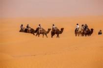 Méharée heißt das Kameltrekking in der Sahara, Nationalpark Jebil,  Foto: Lorenzi